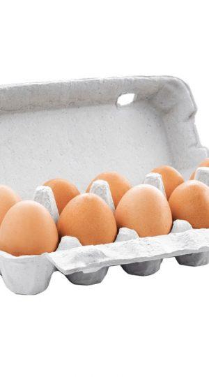 10 Eier braun.jpg