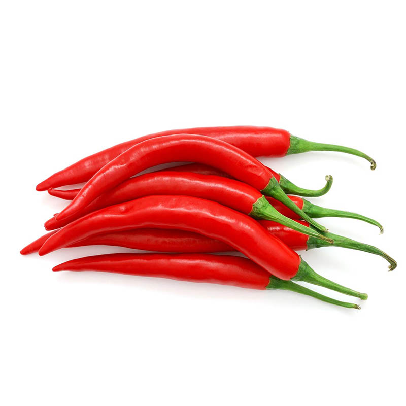 Chili rot.jpg